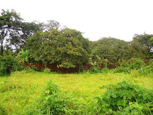 Land For Sale North Goa
